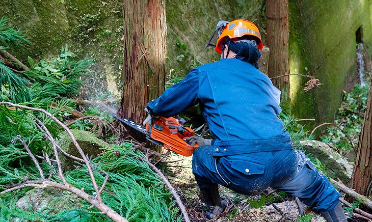 木材の伐採、加工、販売までを一貫する「6次産業」。